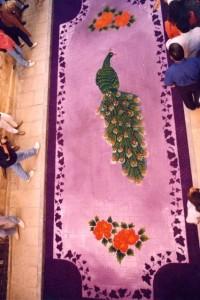 Alfombras de Serrín Elche de la Sierra 1993 1