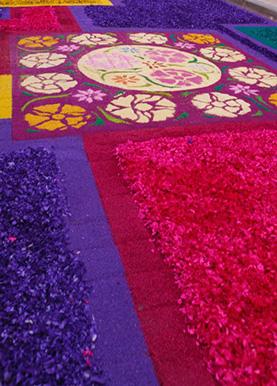 Las alfombras de 2012
