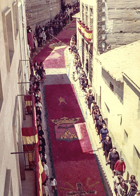 Las alfombras de 1976